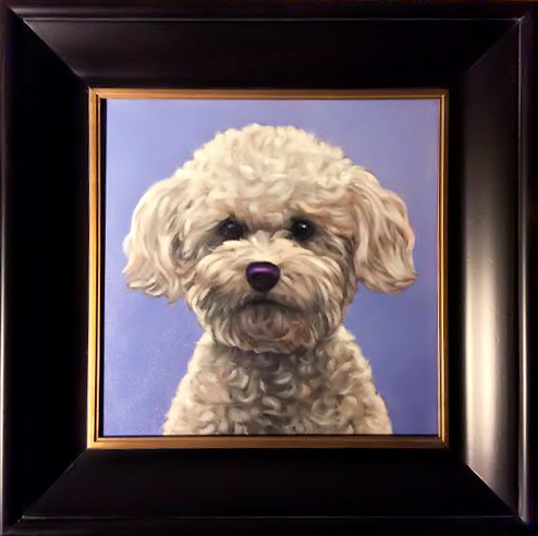 Pet Portrait of Avery, Beautiful Bichon from Carlsbad, San Diego, CA