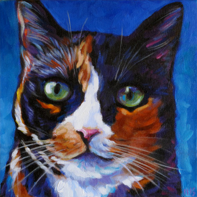 Callie pet portrait calico cat