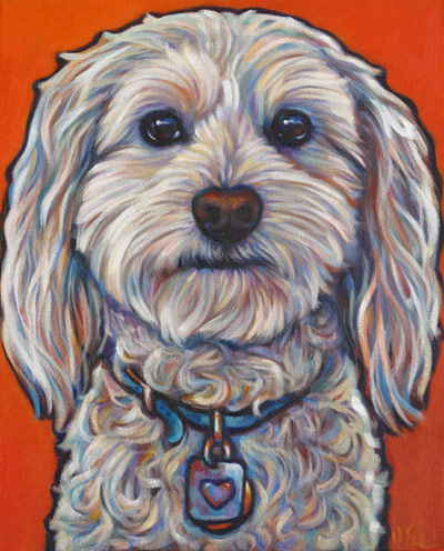 Duffy, pet portrait of handsome Oceanside cockapoo, San Diego, CA