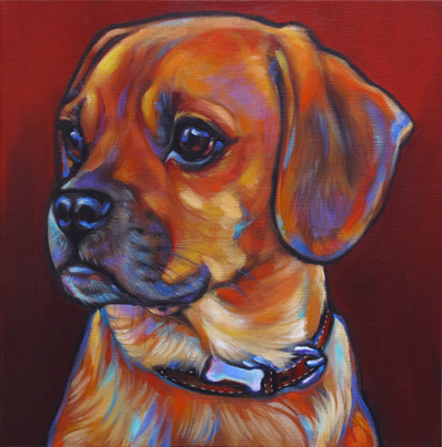 Hunter, the Charismatic Tennessee Puggle!
