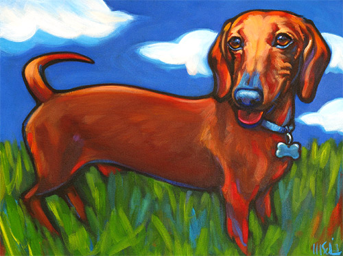 Pet portrait of Dachshund James, from Fresh Meadows, New York