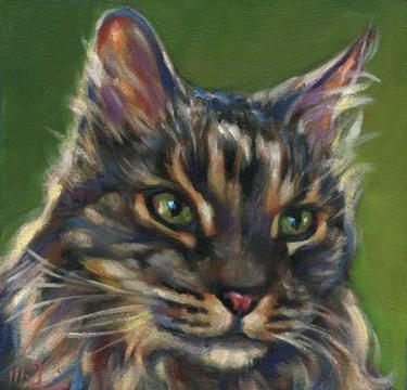 in memory of Jimmy, cat pet portrait of sweet boy from San Diego, CA