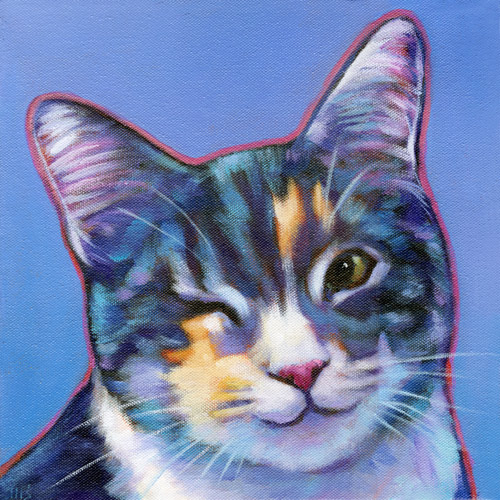 Memorial pet portrait of Kiwi, beloved cat from Woodside, CA by Marna Schindler