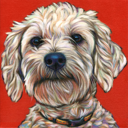 Lola the Malti-Poo's pet portrait