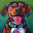 Pet portrait of Max from Ponte Vedra Beach, Florida by Marna Schindler