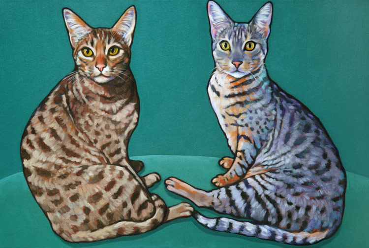 Pet Portrait of Amazing Occicats living in Rancho Santa Fe, by Marna Schindler