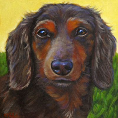 Pet Portrait of Oscar, living in Riverview, Florida