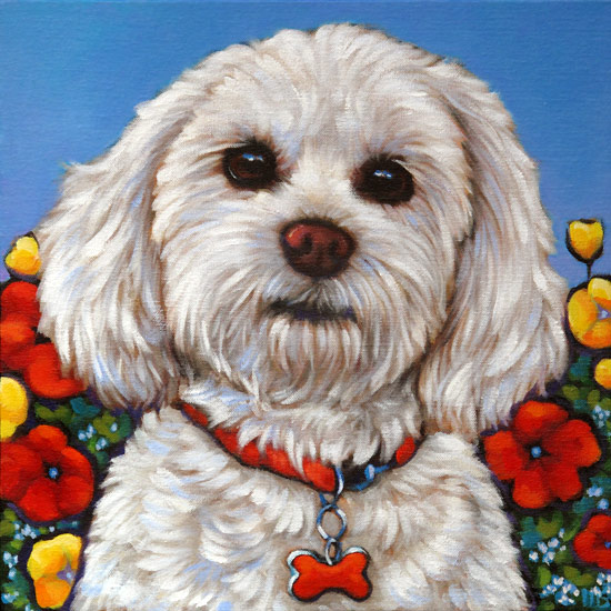 Pet portrait of Pita, beloved four legged family member from Phoenix, AZ by Marna Schindler
