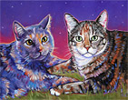 Memorial pet portrait of Sadie and Maggie, two beloved cats from Albuquerque, NM