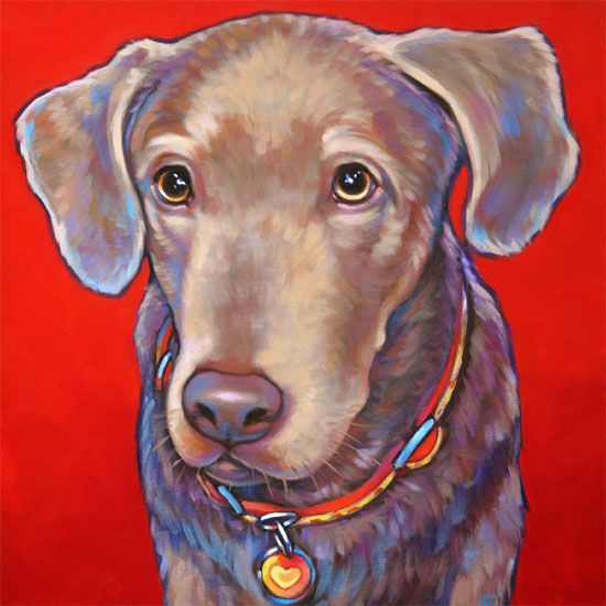 Pet portrait of Teagan, silver lab from Phoenix, AZ
