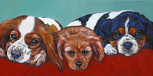 King Charlies Trio pet portrait by Marna Schindler