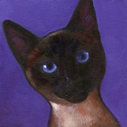 Little Blue Eyes cat portrait, inspired by Natasha kitty in san Diego, CA