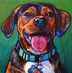 Pet portrait of Max from Ponte Vedra Beach Florida, by Marna Schindler