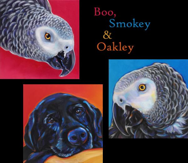 Pet portraits of Boo, Smokey and Oakley